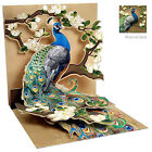 3D Greeting Card by Up w Paper PEACOCK  MAGNOLIAS UP WP 1037