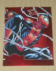 Spider-Man Trading Cards Guide and History 19