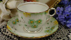 Phoenix China TF&S Thomas Forrester Hand Painted Floral Tea Cup & Saucer