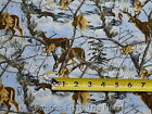 Realtree Bucks Deer at Dusk Scenic Camo Camouflage BY YARDS 100% Cotton fabric