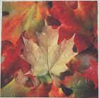 Autumn Fall Leaf Leaves Pillow Top Fabric Panel  New