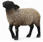 FREE SHIPPING  CollectA 88636 Suffolk Blackfaced Sheep Toy New in Package