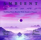 FREE US SH (int'l sh=$0-$3) NEW CD Brian Jack and Peter Swann: Ambient Dreams