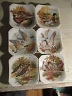 Lot of 6 ROYAL ADDERLEY Vtg COLLECTIBLE SMALL SQUARE PLATES- Water Fowl- Ducks