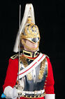 SHIP FROM USA!! DID British Army The Life Guards 1/6 Scale Action Figure K80108