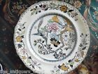 Antique Porcelain Plate  1890 Ashworth Bros Hanley England Bird Floral[2esq]