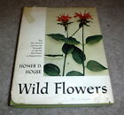 Wild Flowers by Homer D House box 41