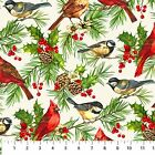 Home for the Holidays Birds on White Cotton Fabric by Northcott