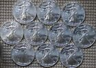 2013 SILVER EAGLE GEM BU LOT OF 10 LOWEST PRICE AND FREE PRIORITY MAIL 10 OZ