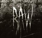 RAW (CALGARY) - FROM THE FIRST GLASS TO THE GRAVE NEW CD