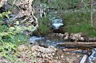 Montana Gold Mining Claim Placer South Meadow Creek Madison County McAllister
