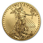 SPECIAL PRICE 2017 1 oz Gold American Eagle BU SKU 117271