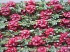 VINTAGE FRENCH STYLE RED PINK  GREEN ROCOCO FLOWER TRIM WITH PEARL 1 YARD