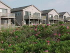 Cape Cod ProvincetownMa 10 23 10 27 17 4 Day Fall MidWeek Beach Rental Vacation