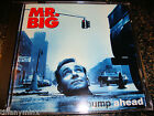 MR. BIG cd BUMP AHEAD free US shipping