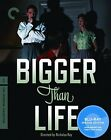Bigger Than Life Blu ray Disc 2010 Criterion Collection