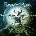 FLASHBACK OF ANGER - TERMINATE AND STAY RESIDENT NEW CD