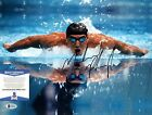 USA Gold Michael Phelps Autographed Signed Photo 11x14 BAS C16213