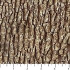 Naturescapes Bark Brown 21397 36 Cotton Fabric by Northcott
