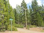 SALE 9 Acre California Pines NO Doc Fee Low PriceGreat Road Power