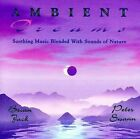FREE US SHIP. on ANY 3+ CDs! NEW CD Brian Jack and Peter Swann: Ambient Dreams