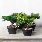 Artificial Bonsai Tree Black Pot Indoor House Office Home Decoration Decor Plant