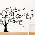 Wall stickers Photo frame family tree Decor Vinyl Decal Mural home