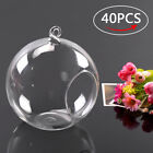 40pcs Hanging Glass Ball Vase Flower Air Plant Pot Terrarium Container Decor New