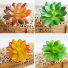 Artificial Mini Succulent Grass Lotus Flower Plant Floral Garden Landscape Decor
