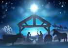 Jesus Nativity Manger Animals Wise Men 10x8FT Vinyl Studio Backdrop Background