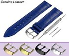 Fits FOSSIL Blue Genuine Leather Watch Strap Band For Buckle Clasp 18-24mm +Pins
