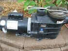 Hayward Pool Pump w Extreme E 15 HP 2 speed motor Free Shipping