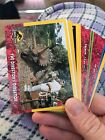 Are New Jurassic Park Trading Cards on the Way? 15
