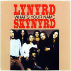 LYNYRD SKYNYRD - WHAT'S YOUR NAME (CD 1987 MCA USA) v No Case
