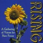 Rising: A Gathering of Voices for New Power - George Ella Lyon,Bob Masterson,A -