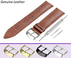 Fits FORTIS Brown Genuine Leather Watch Strap Band For Buckle Clasp 12-24mm