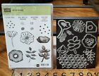Spellbinders ONE OF A KIND stamp  die template set flower feather quill