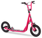 Expo Scooter Featuring Front Rear Caliper Brakes Rear Axle Pegs Inflatable Wheel