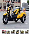 Motorcycle electric bike citycoco electric scooter motor tricycle three wheel el