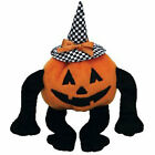 TY Beanie Baby - TRICK R TREAT the Pumpkin (5.5 inch) - MWMTs Stuffed Animal Toy