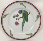 MINT Lynn Chase Salad Dessert Plate PARROTS OF PARADISE 8 1 4 1989