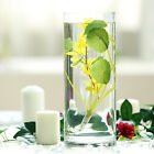 6 pcs 12 Inch tall Clear Glass Cylinder Centerpieces Vases Wedding Supplies Sale