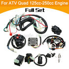 Full Wiring Harness Quad Electric CDI Coil Wire For 125cc 200cc 250cc ATV