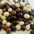 Chocolate Covered Espresso Beans Coffee Tricolor Candy 1 2 lb to 10 lbs choose