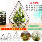 Glass Geometric Terrarium Box Succulent Flower Pot Plant Display Container Decor
