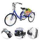 24 26 Adult Size 7 Speed Tricycle 3 Wheels Trike Bicycle Shopping Basket New