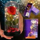 24K Gold Plated Dipped Rose Flower in Glass Dome Valentines Day Gift for Her