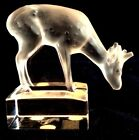 LALIQUE Art Glass Crystal GRAZING FALLOW DEER SCULPTURE Frosted with Clear Base