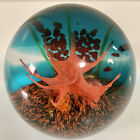 Caithness Scotland Limited Edition of 500 Coral Dream Paperweight 198 500