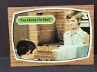 1969 TOPPS The BRADY BUNCH Trading CARD #64 CAN I KEEP THE BIRD? 1971 Carol NM